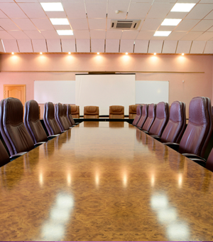 Mauve 21- Executive Board Room